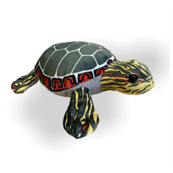 "10"" Painted Turtle"
