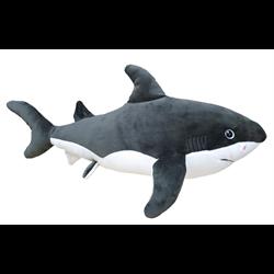 """18"""" Shark"""