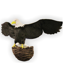 Display - Wall Hanging Eagle on Nest