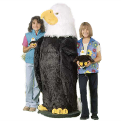 "Display - 5' 4"" Eagle Standing"