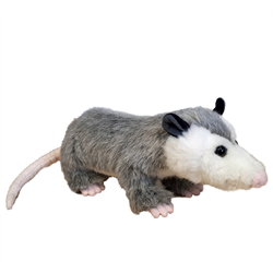 "14"" Natural Opossum"