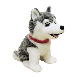 "7"" Sitting Grey Husky with Red Canada Ribbon"
