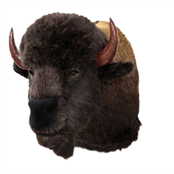 Display - Wall Hanging Buffalo Head
