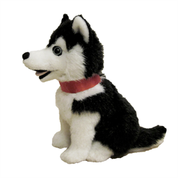 "7"" Sitting Black Husky"