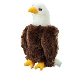 """9"""" Eagle"""