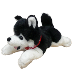 "9"" Floppy Black Husky with Red Canada Ribbon"