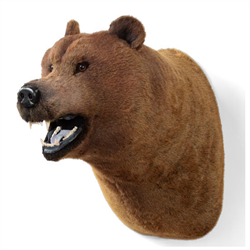 Display - Wall Hanging Grizzly Bear Head