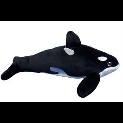 "7"" Killer Whale"